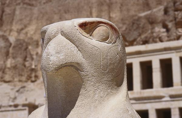 ANIMAUX FANTASTIQUES Olivier Tardiveau Photographe Nantes étonnante Horus Temple Hatchepsouth Louxor Égypte b7-14