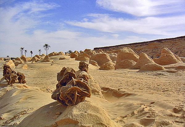 Vacances Olivier Tardiveau Photographe Nantes Natures Désert Tunisien b5-23