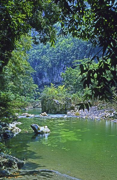 Vacances Olivier Tardiveau Photographe Nantes Natures Cuba Yumuri b5-31